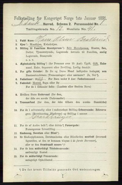 Image from object titled Folketelling 1891 - Nordre Land - personsedler - side 3459