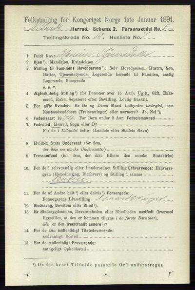 Image from object titled Folketelling 1891 - Nordre Land - personsedler - side 3542