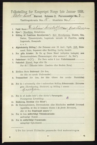 Image from object titled Folketelling 1891 - Nordre Land - personsedler - side 3798