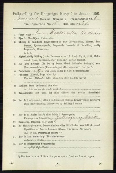 Image from object titled Folketelling 1891 - Nordre Land - personsedler - side 3979
