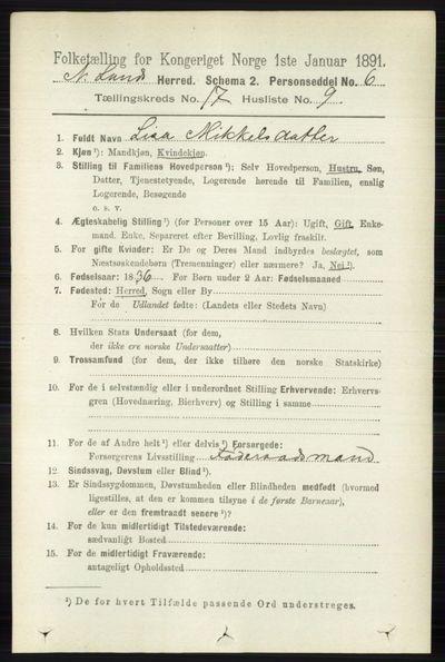 Image from object titled Folketelling 1891 - Nordre Land - personsedler - side 4332