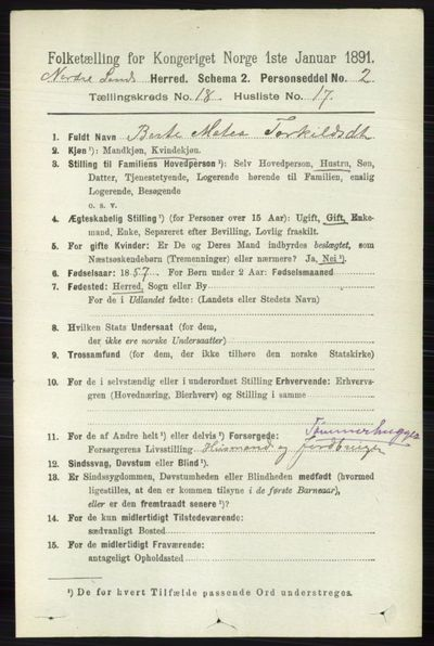 Image from object titled Folketelling 1891 - Nordre Land - personsedler - side 4489