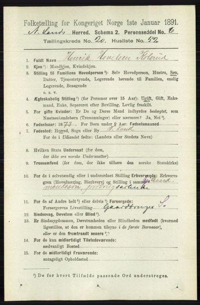 Image from object titled Folketelling 1891 - Nordre Land - personsedler - side 5181