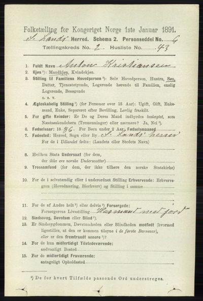 Image from object titled Folketelling 1891 - Søndre Land - personsedler - side 1300