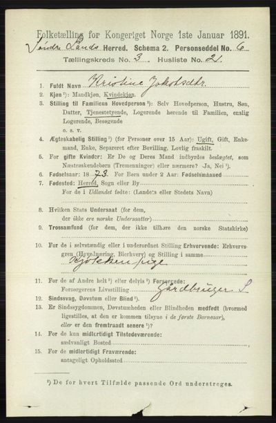 Image from object titled Folketelling 1891 - Søndre Land - personsedler - side 2642