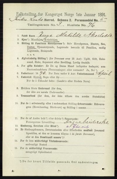 Image from object titled Folketelling 1891 - Søndre Land - personsedler - side 3078