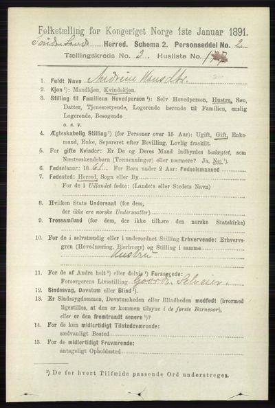 Image from object titled Folketelling 1891 - Søndre Land - personsedler - side 3575