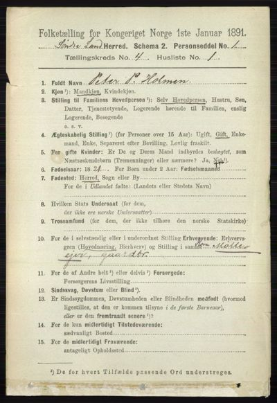 Image from object titled Folketelling 1891 - Søndre Land - personsedler - side 3993