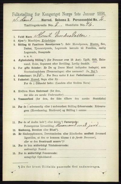 Image from object titled Folketelling 1891 - Søndre Land - personsedler - side 5092