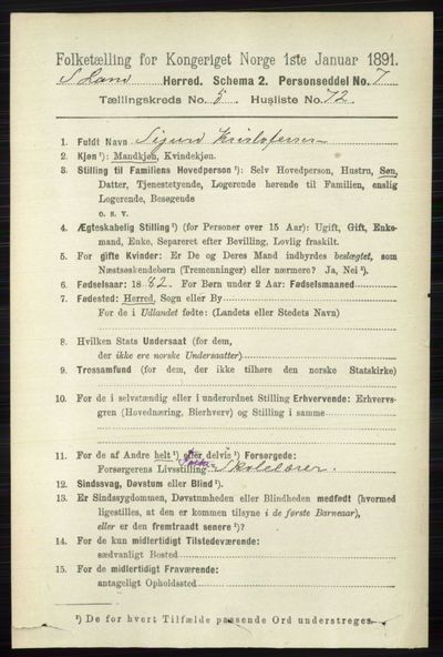 Image from object titled Folketelling 1891 - Søndre Land - personsedler - side 5281