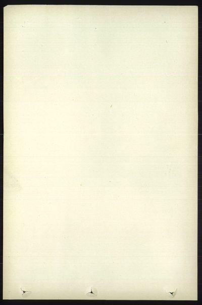 Image from object titled Folketelling 1891 - Øystre Slidre - personsedler - side 705