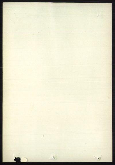 Image from object titled Folketelling 1891 - Øystre Slidre - personsedler - side 745