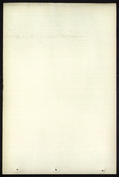 Image from object titled Folketelling 1891 - Øystre Slidre - personsedler - side 817