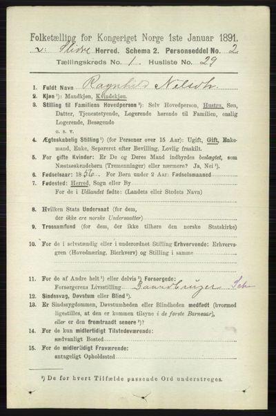 Image from object titled Folketelling 1891 - Vestre Slidre - personsedler - side 251