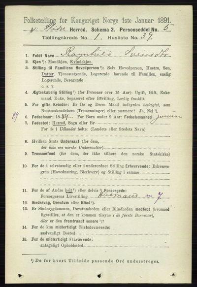 Image from object titled Folketelling 1891 - Vestre Slidre - personsedler - side 303