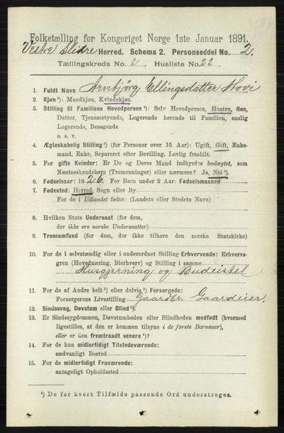 Image from object titled Folketelling 1891 - Vestre Slidre - personsedler - side 649
