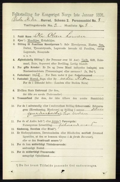 Image from object titled Folketelling 1891 - Vestre Slidre - personsedler - side 869