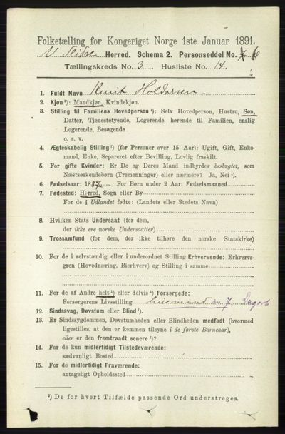 Image from object titled Folketelling 1891 - Vestre Slidre - personsedler - side 915