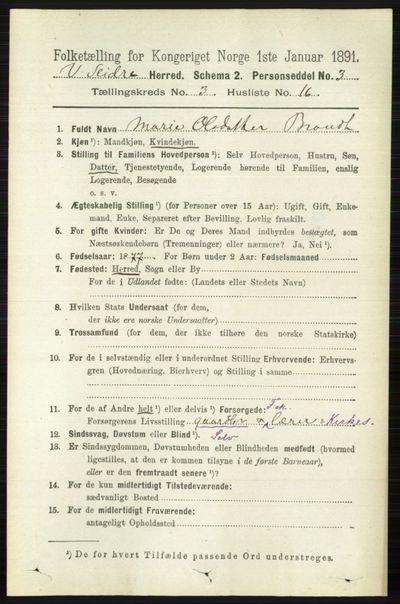 Image from object titled Folketelling 1891 - Vestre Slidre - personsedler - side 925