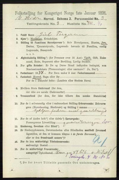 Image from object titled Folketelling 1891 - Vestre Slidre - personsedler - side 1094