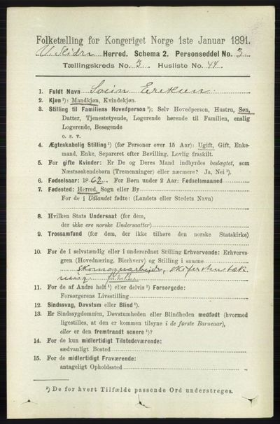 Image from object titled Folketelling 1891 - Vestre Slidre - personsedler - side 1108
