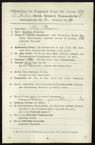 Image from object titled Folketelling 1891 - Vestre Slidre - personsedler - side 1141