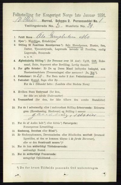 Image from object titled Folketelling 1891 - Vestre Slidre - personsedler - side 1899