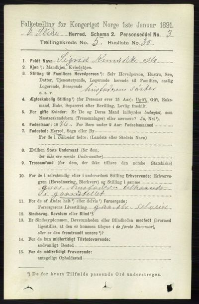 Image from object titled Folketelling 1891 - Vestre Slidre - personsedler - side 1907