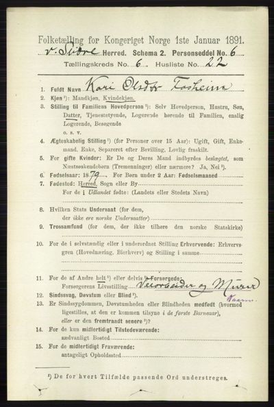 Image from object titled Folketelling 1891 - Vestre Slidre - personsedler - side 2192