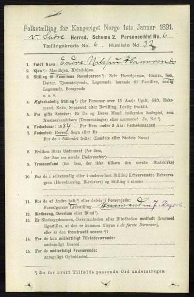 Image from object titled Folketelling 1891 - Vestre Slidre - personsedler - side 2262