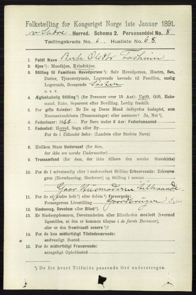 Image from object titled Folketelling 1891 - Vestre Slidre - personsedler - side 2482