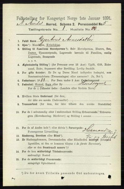 Image from object titled Folketelling 1891 - Nord-Aurdal - personsedler - side 421