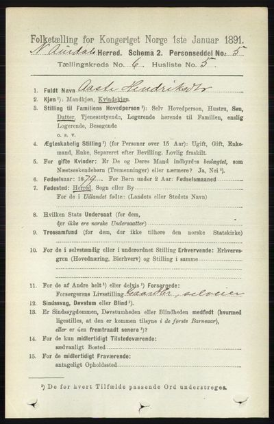 Image from object titled Folketelling 1891 - Nord-Aurdal - personsedler - side 2118