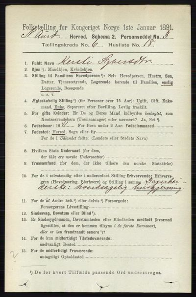 Image from object titled Folketelling 1891 - Nord-Aurdal - personsedler - side 2194