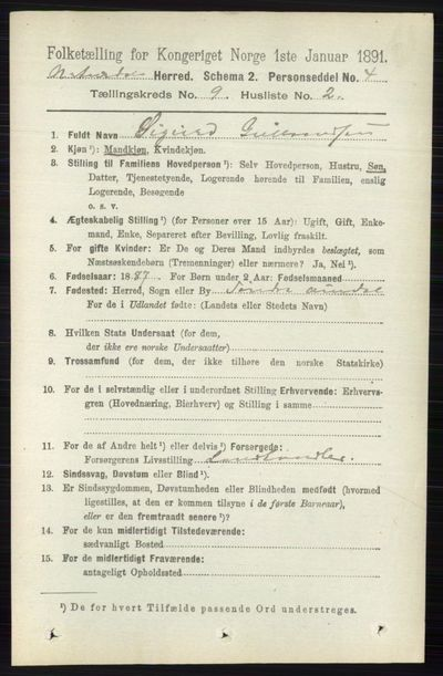 Image from object titled Folketelling 1891 - Nord-Aurdal - personsedler - side 3429