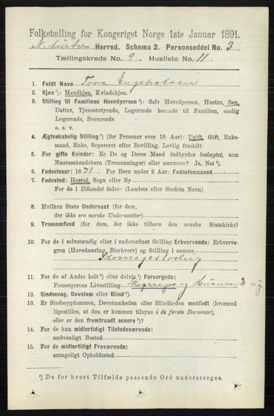 Image from object titled Folketelling 1891 - Nord-Aurdal - personsedler - side 3464