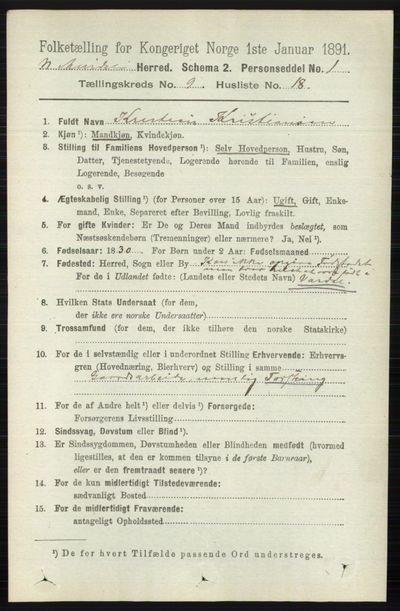 Image from object titled Folketelling 1891 - Nord-Aurdal - personsedler - side 3497