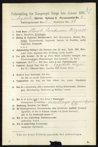 Image from object titled Folketelling 1891 - Sigdal - personsedler - side 3852