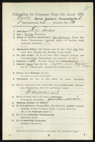 Image from object titled Folketelling 1891 - Sigdal - personsedler - side 4010