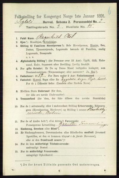 Image from object titled Folketelling 1891 - Sigdal - personsedler - side 4556