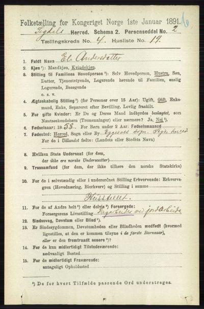 Image from object titled Folketelling 1891 - Sigdal - personsedler - side 4787