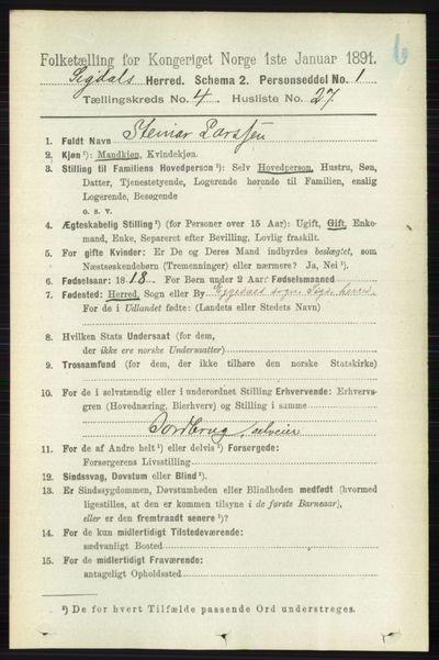 Image from object titled Folketelling 1891 - Sigdal - personsedler - side 4837