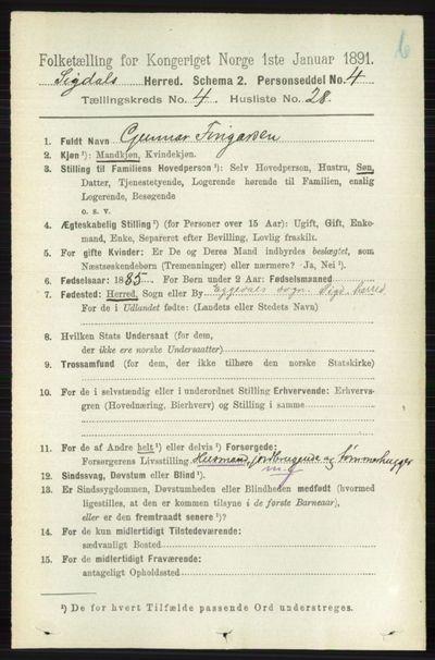 Image from object titled Folketelling 1891 - Sigdal - personsedler - side 4847
