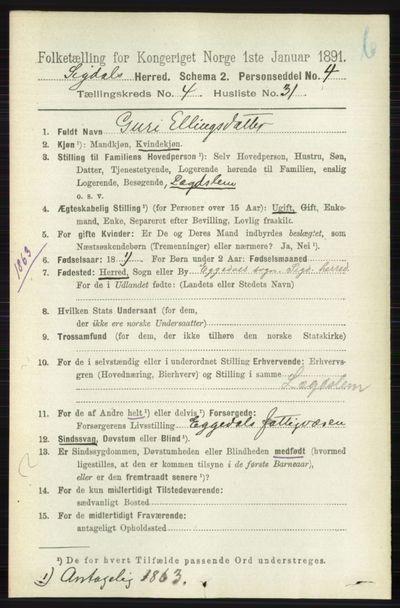 Image from object titled Folketelling 1891 - Sigdal - personsedler - side 4866