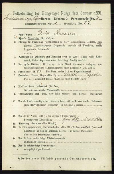 Image from object titled Folketelling 1891 - Sigdal - personsedler - side 6785