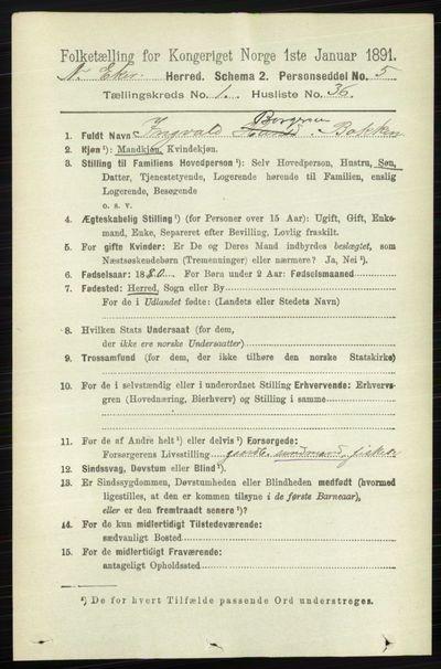 Image from object titled Folketelling 1891 - Nedre Eiker - personsedler - side 276