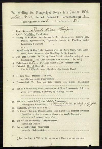 Image from object titled Folketelling 1891 - Nedre Eiker - personsedler - side 687