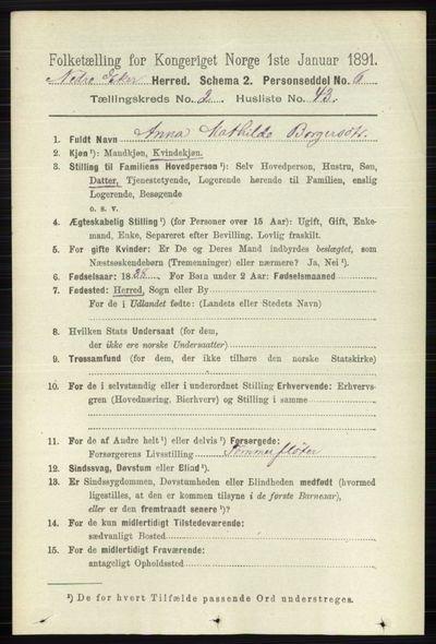 Image from object titled Folketelling 1891 - Nedre Eiker - personsedler - side 785