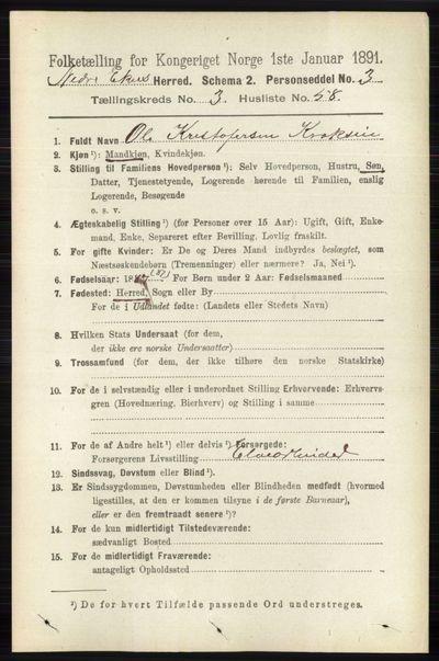 Image from object titled Folketelling 1891 - Nedre Eiker - personsedler - side 1498