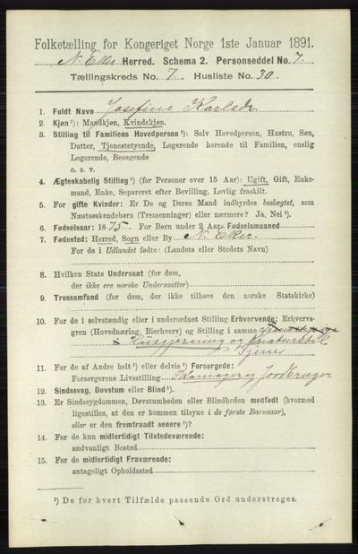 Image from object titled Folketelling 1891 - Nedre Eiker - personsedler - side 3583